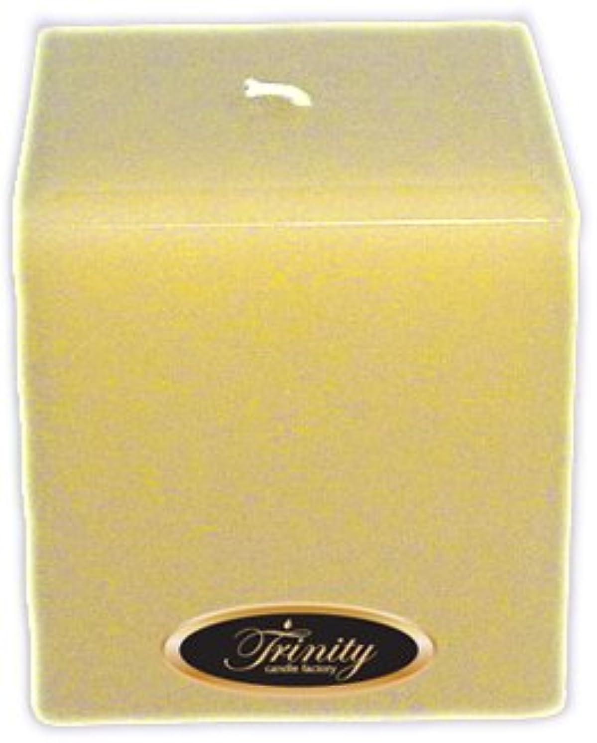 失う試験永久にTrinity Candle工場 – Vanilla Spice – Pillar Candle – 正方形 – 4 x 4
