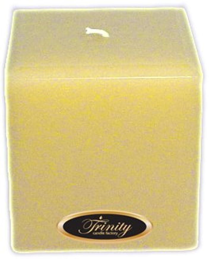 数行うにぎやかTrinity Candle工場 – Vanilla Spice – Pillar Candle – 正方形 – 4 x 4