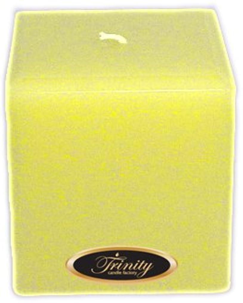 愛撫交換そうTrinity Candle工場 – Gardenia – Pillar Candle – 正方形 – 4 x 4