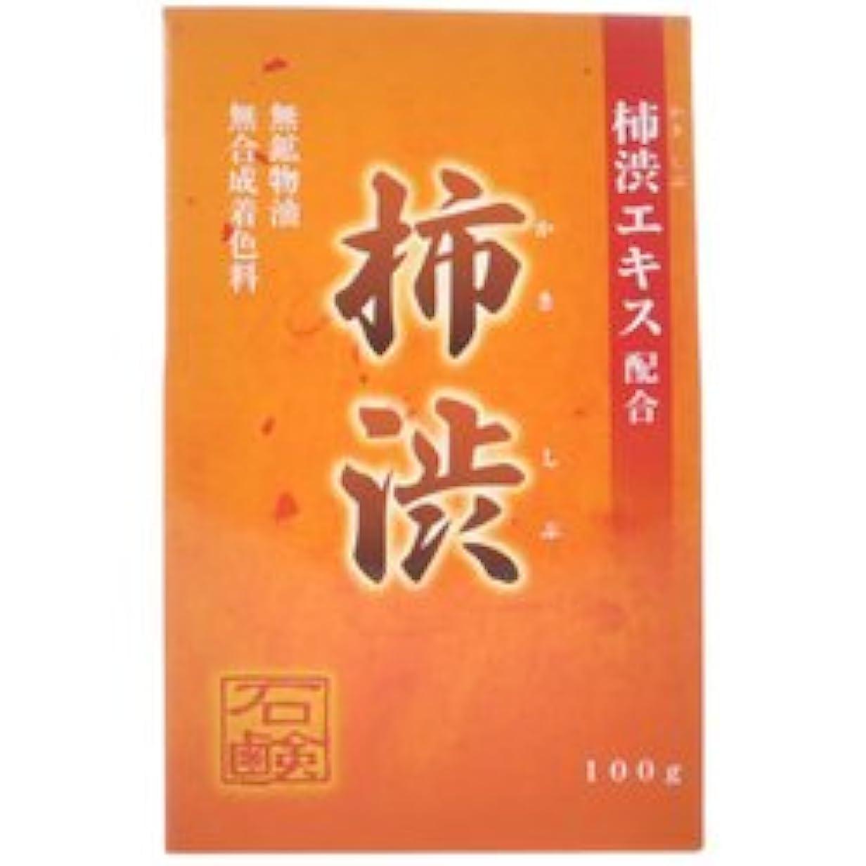 【アール?エイチ?ビープロダクト】新 柿渋石鹸 100g ×5個セット