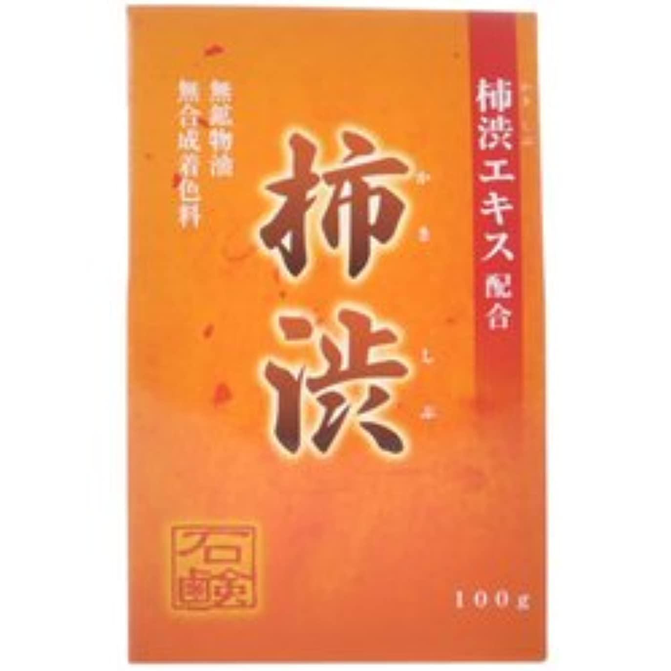 早熟返済パイル【アール・エイチ・ビープロダクト】新 柿渋石鹸 100g ×10個セット