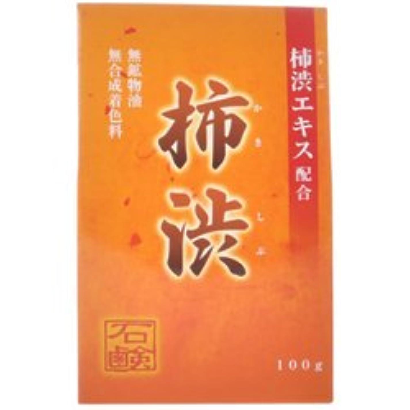 束落胆する伝記【アール?エイチ?ビープロダクト】新 柿渋石鹸 100g ×5個セット