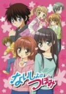 ないしょのつぼみ 3  DVD