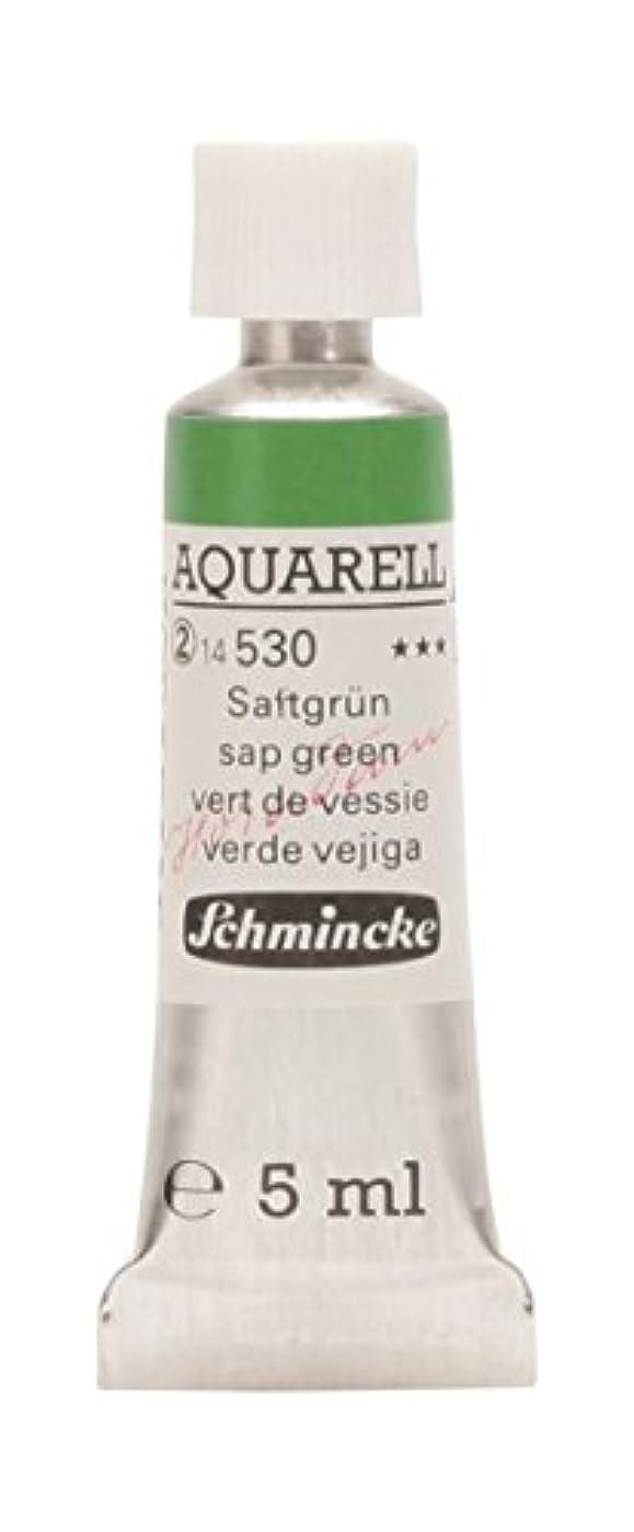 ジャニスサーマル溶接Schmincke(シュミンケ) ホラダム透明水彩絵具 Schmincke(シュミンケ) ホラダムチューブ 530 サップグリーン 14530001