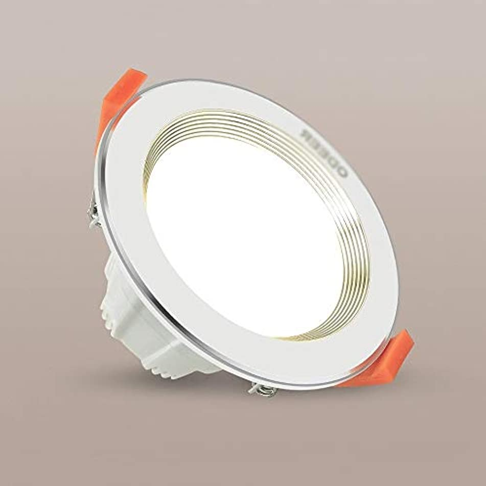 レザーようこそ焦げLaytter Ledダウンライト調光ライト5ワットバレルライト天井天井埋め込み穴ランプリビングルームスポットライト (Color : 白色光, サイズ : 5w)