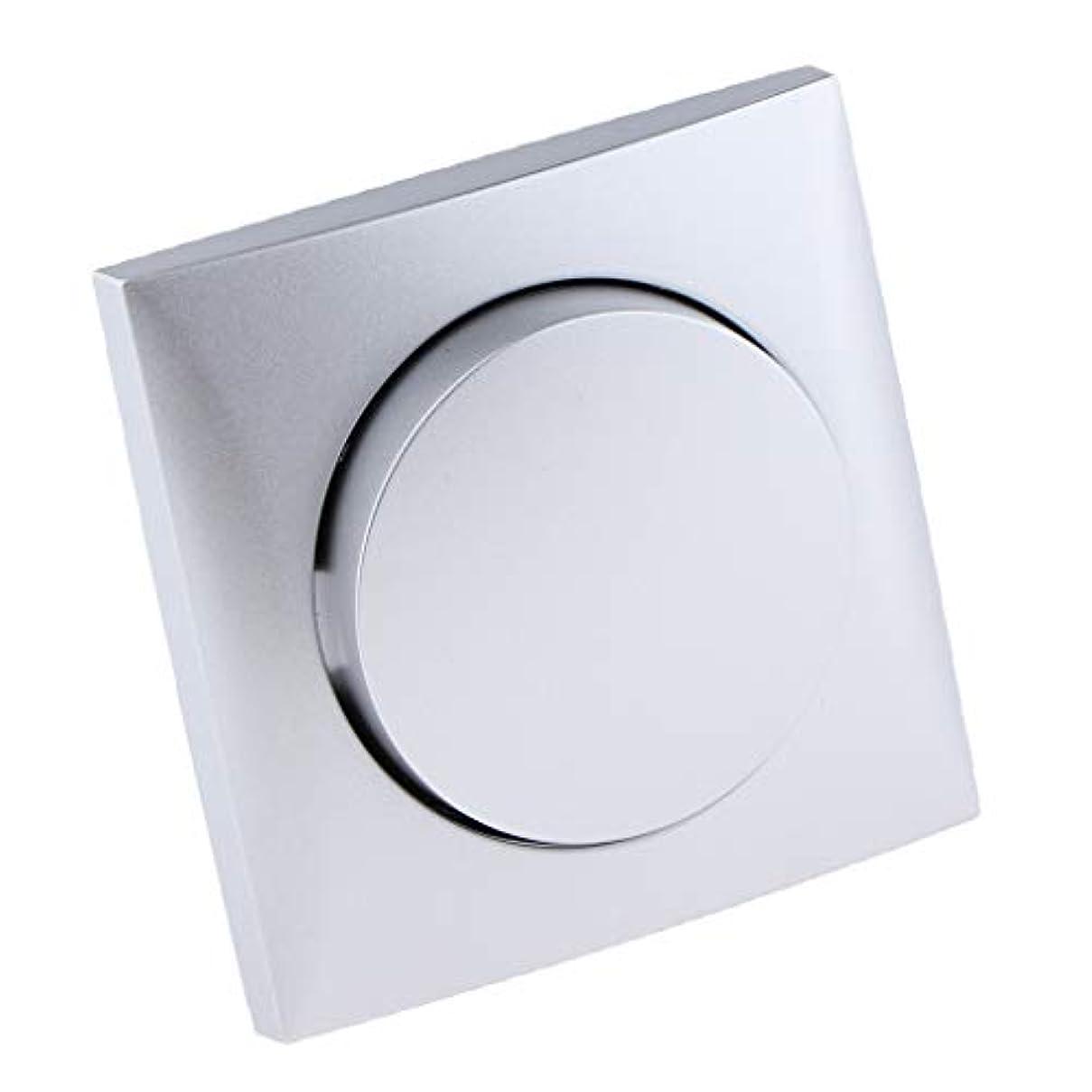 昼間遺棄された会議B Blesiya 耐久性 安全 単一制御 スイッチ シルバー 埋込スイッチ プラスチック製