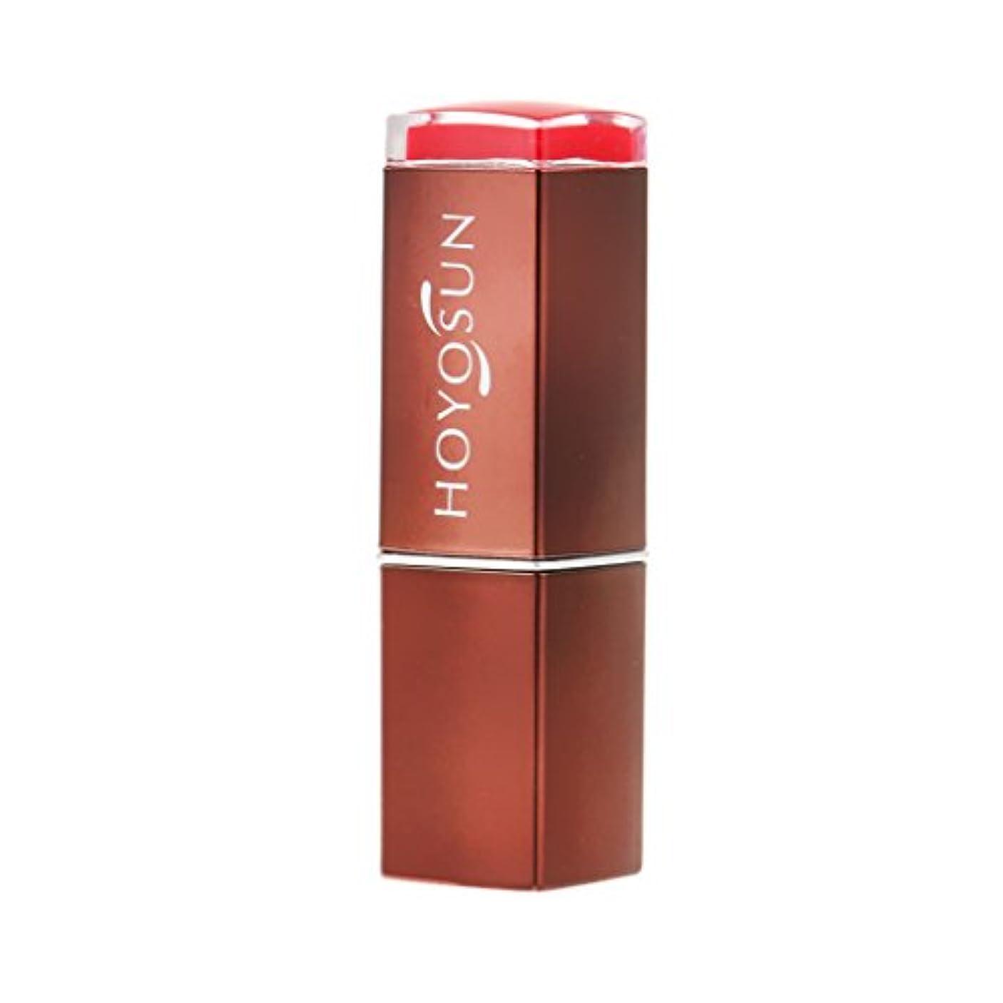 有効経度フクロウSM SunniMix レディース リップグロス 口紅 リップスティック 長持ち 防水 モイスチャライジング 全4色選ぶ - 6#