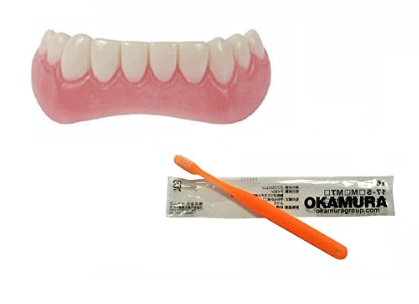 ラッカスアサー帰するインスタントスマイル 下歯用 フリーサイズ + OKAMURA 歯科医推奨歯ブラシ セット