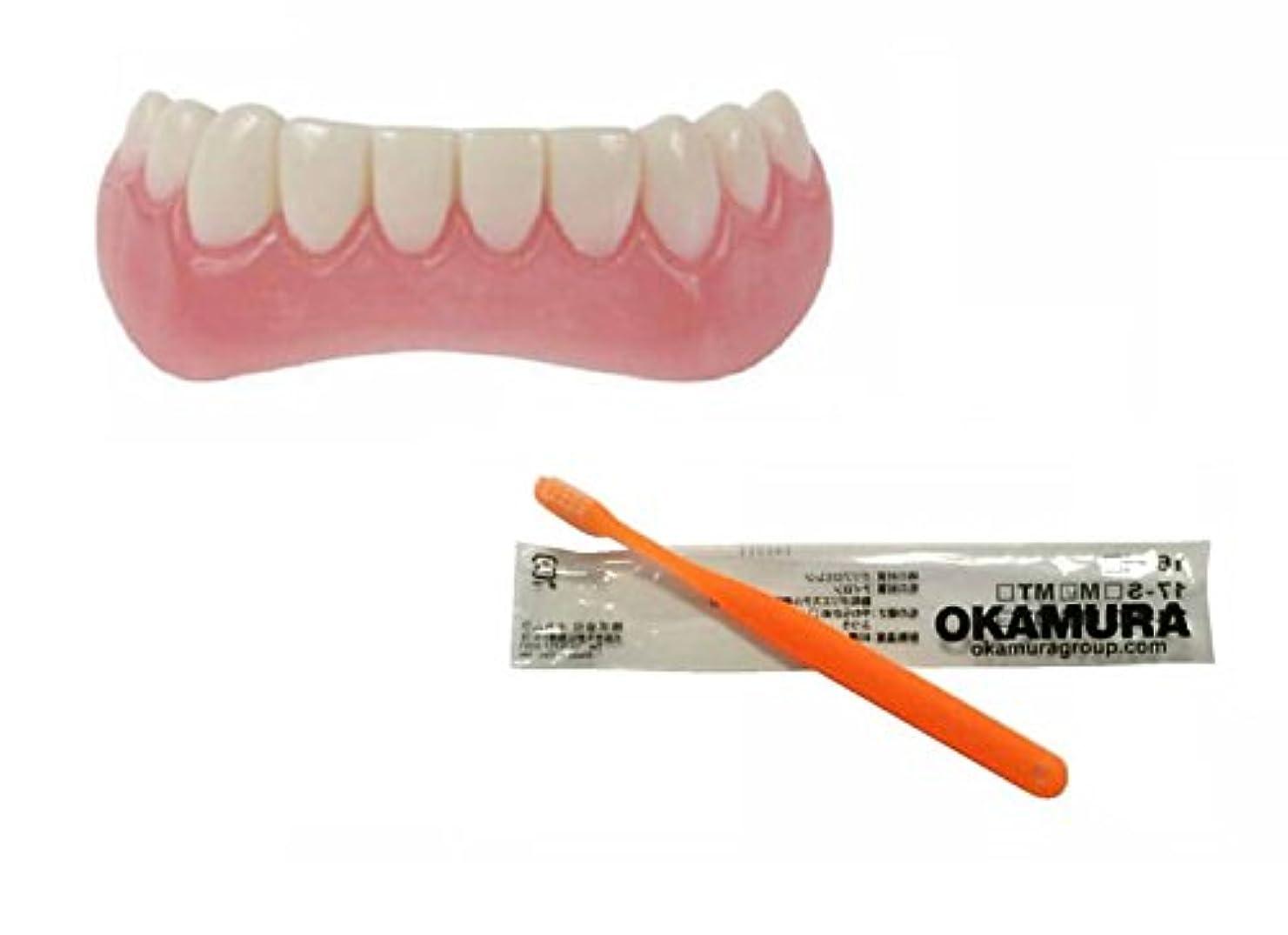 気候薬理学家畜インスタントスマイル 下歯用 フリーサイズ + OKAMURA 歯科医推奨歯ブラシ セット