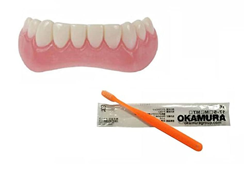 動員するスパーク絶妙インスタントスマイル 下歯用 フリーサイズ + OKAMURA 歯科医推奨歯ブラシ セット