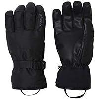 phenix(フェニックス) Performance Gloves PS878GL34 BK L