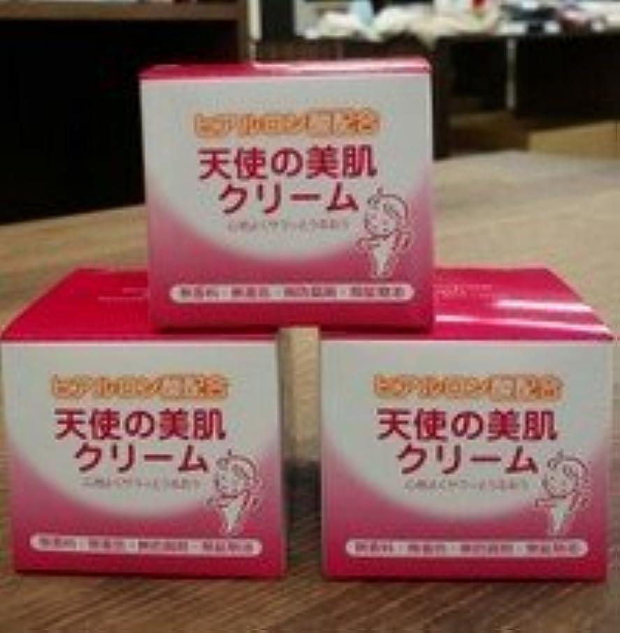 入場料輸血仮説天使の美肌クリーム 80g×3個セット