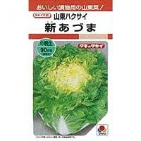 白菜 種 新あづま 小袋(約20ml)