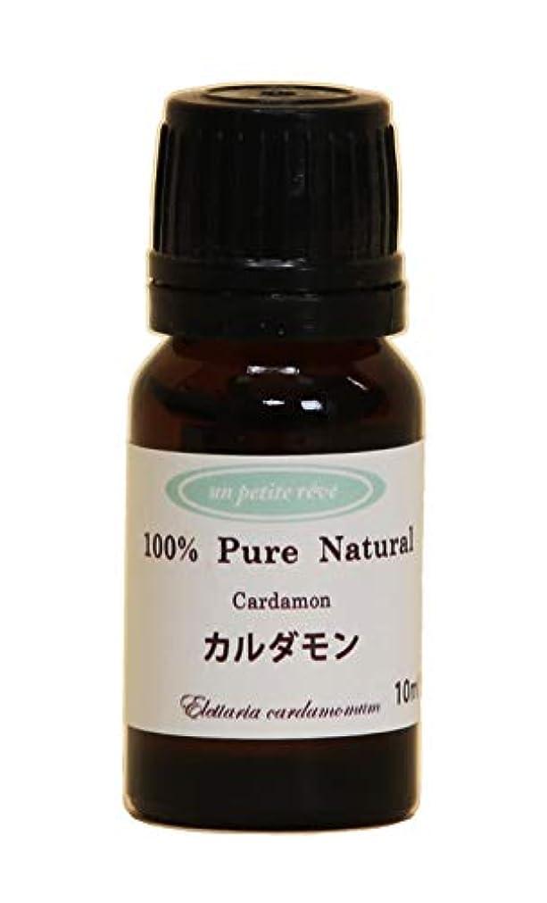 皮肉な取り戻す既婚カルダモン 10ml 100%天然アロマエッセンシャルオイル(精油)