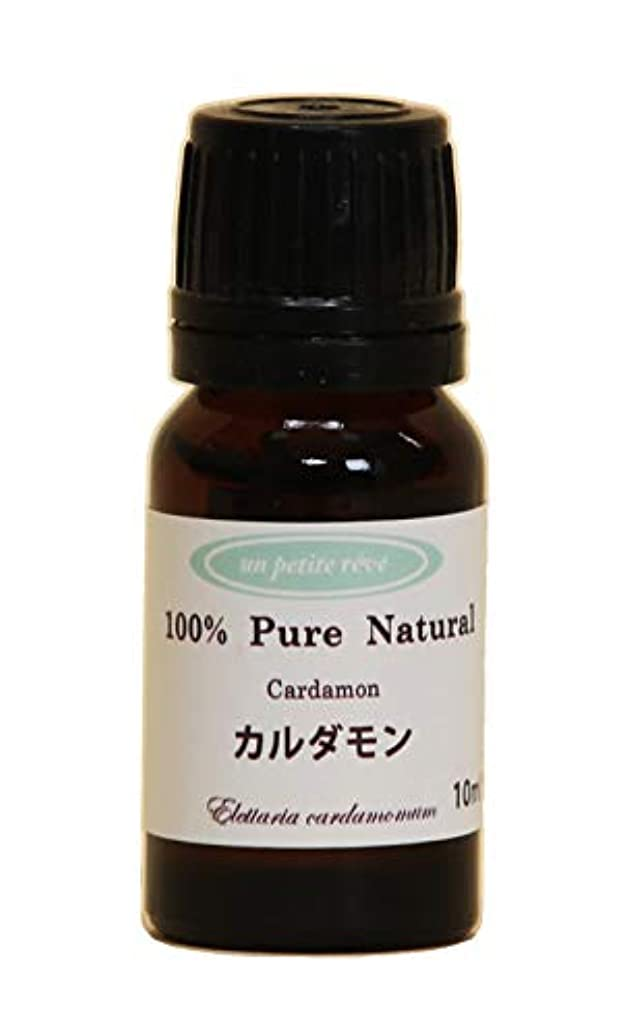 排気大きさ囲むカルダモン 10ml 100%天然アロマエッセンシャルオイル(精油)