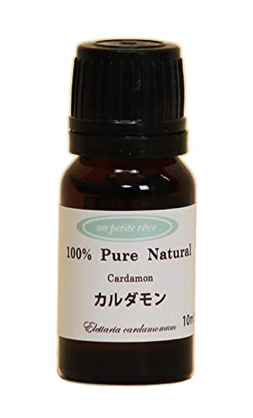 無線灰泥だらけカルダモン 10ml 100%天然アロマエッセンシャルオイル(精油)