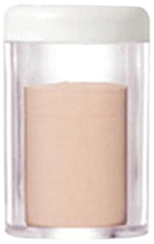 冷酷な発見するエールゲマイン UVパウダー レフィル ナチュラルライト