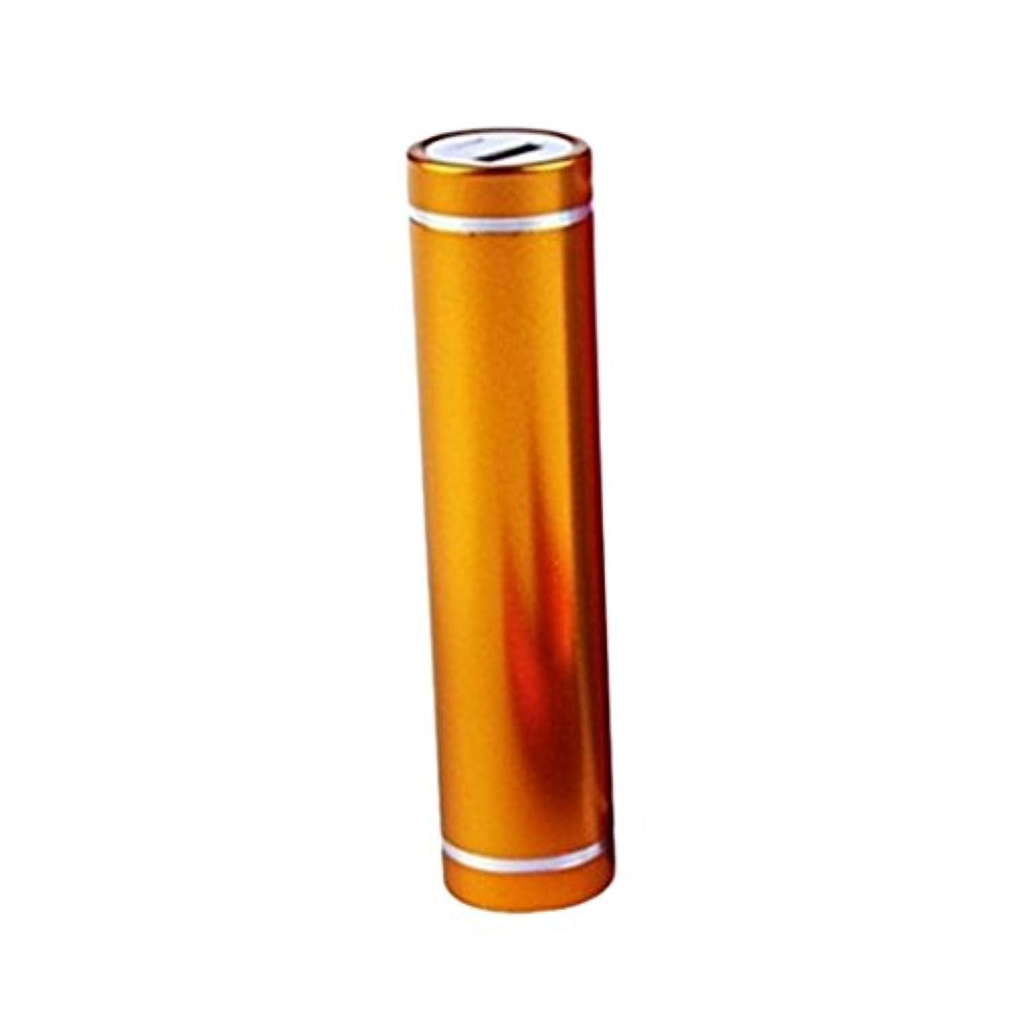 スーダンまだらリスク充電電池 バッテリー ケース USB 5V 1A ボックスストア