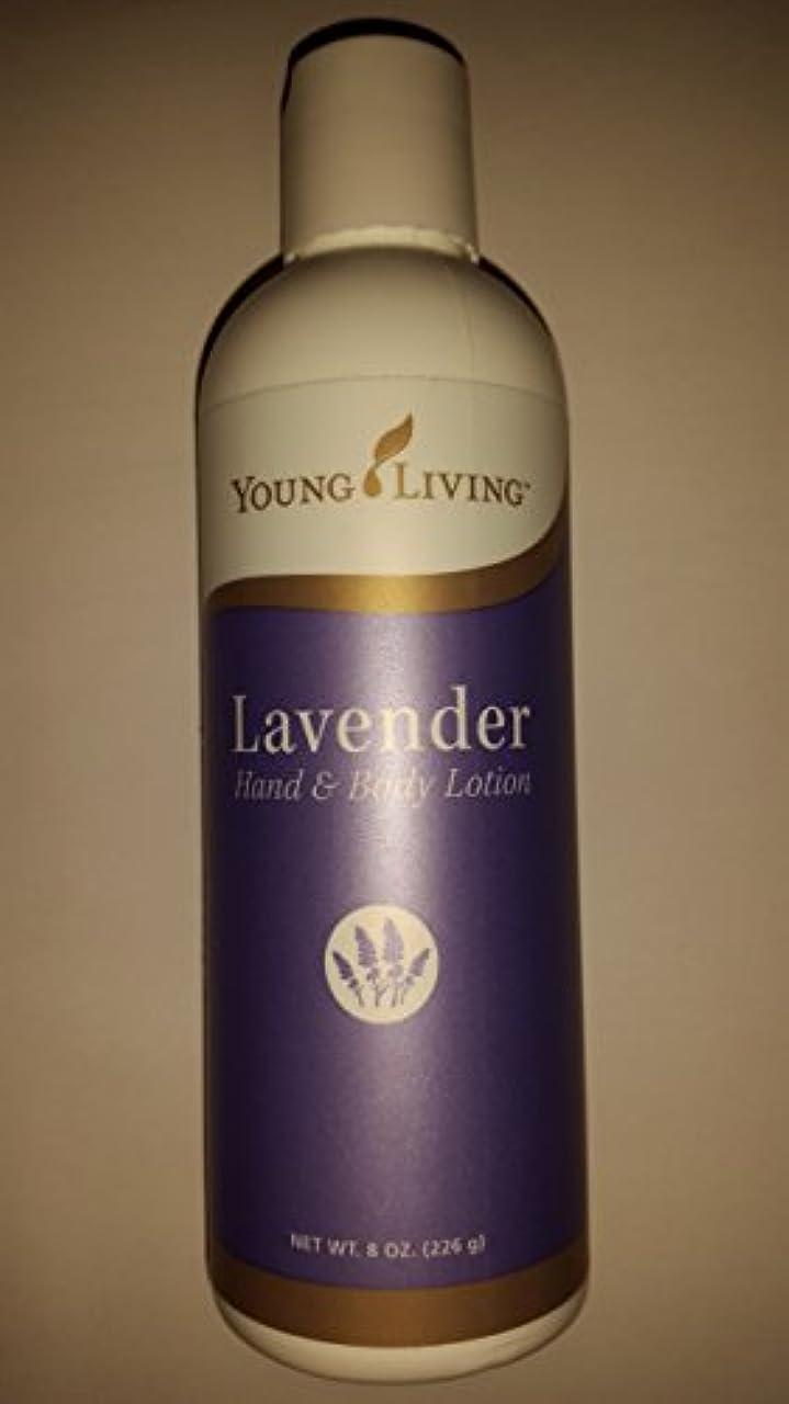 聖なる今晩発疹Young Living ラベンダーハンド&ボディローション - 8 fl。オンス