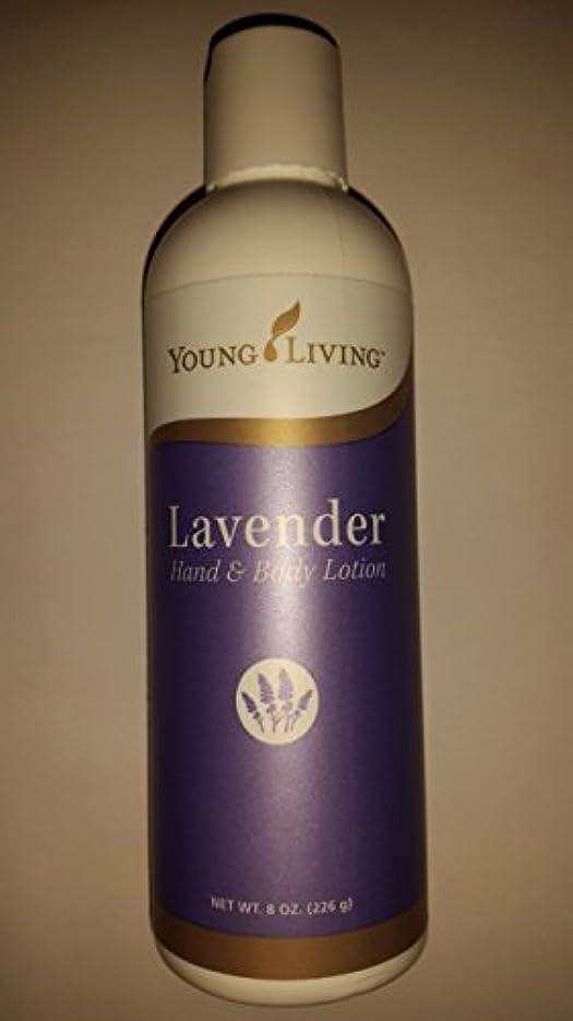 選ぶ発表するズボンYoung Living ラベンダーハンド&ボディローション - 8 fl。オンス