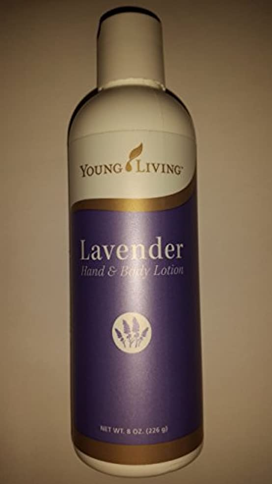 ベンチ工夫する直径Young Living ラベンダーハンド&ボディローション - 8 fl。オンス