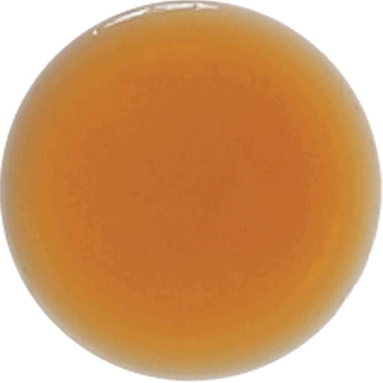 比類のないご飯抗生物質生活の木 スカルプケア アーユルヴェーダ トニックシャンプー アムラ&センテラ 500ml