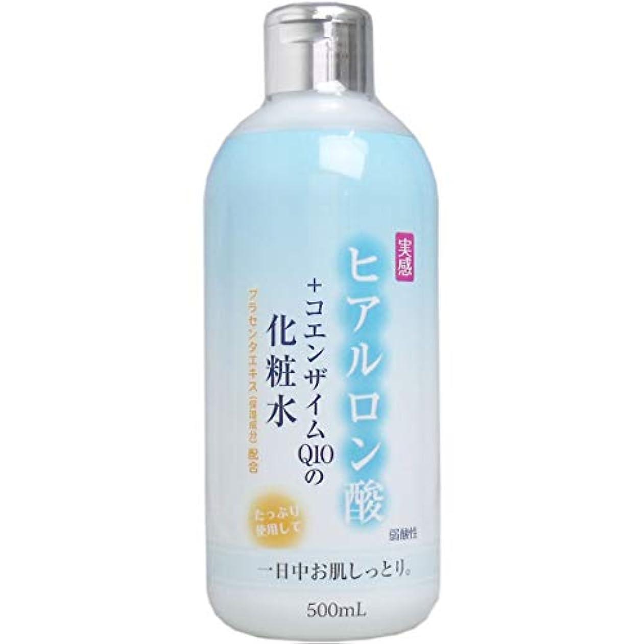 チート希望に満ちた評判ヒアルロン酸+コエンザイムQ10 化粧水 500mL