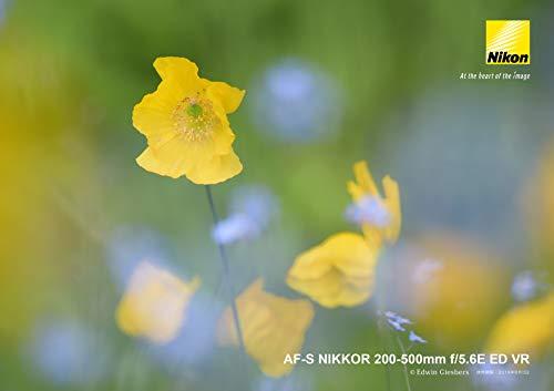 『Nikon 望遠ズームレンズ AF-S NIKKOR 200-500mm f/5.6E ED VR』の15枚目の画像