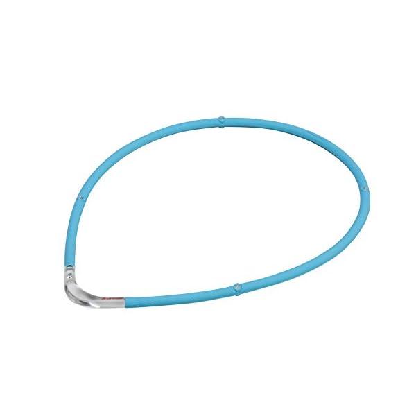 ファイテン(phiten) ネックレス RAKU...の商品画像