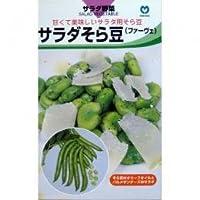 そら豆 種 サラダそら豆 小袋(約1dl)