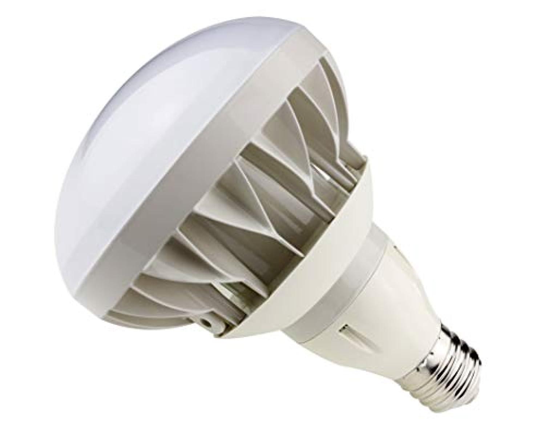 バラストレス LED E39 40W 6000lm 昼白色 軽量 水銀灯500W相当 防水 IP65