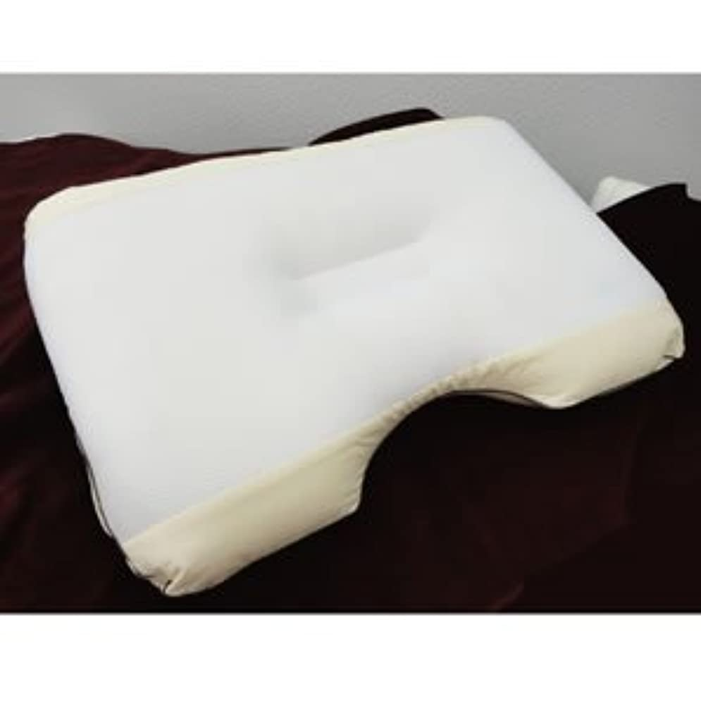リテラシー受け入れ華氏静電気除去枕 空ねる枕