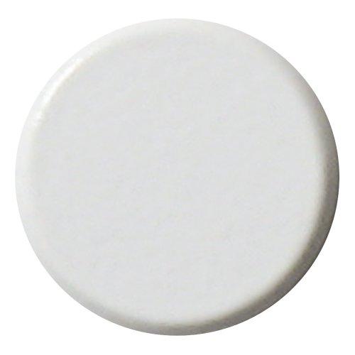 ソニック 白 両面強力カラーマグネット 10個入 MG-781-W