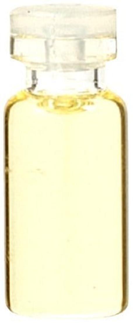 ガラス振り子クルー生活の木 和精油シソ 10ml