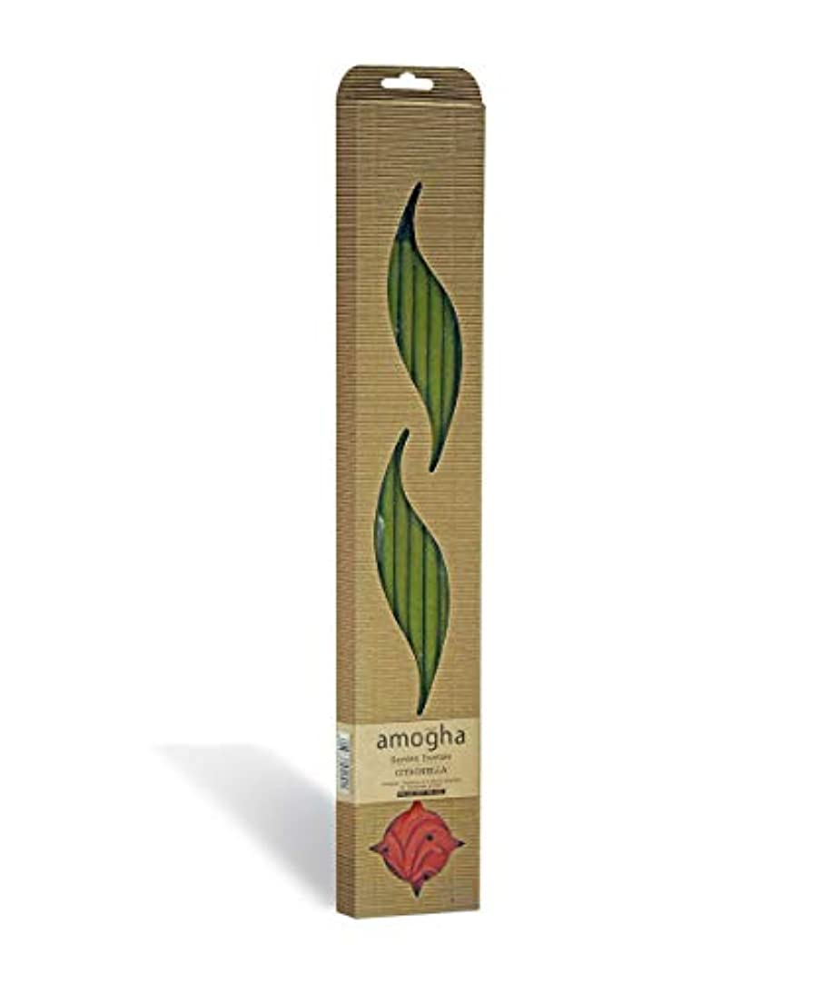 メドレーインストール最少Iris Amogha Citronella Bamboo Incense Stick Set (8.8 cm x 2.5 cm x 53.3 cm, Green)