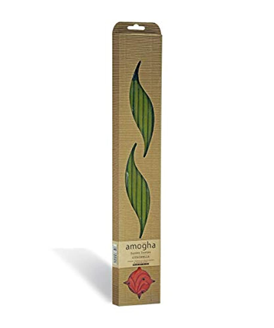 手入れモディッシュ迫害するIris Amogha Citronella Bamboo Incense Stick Set (8.8 cm x 2.5 cm x 53.3 cm, Green)