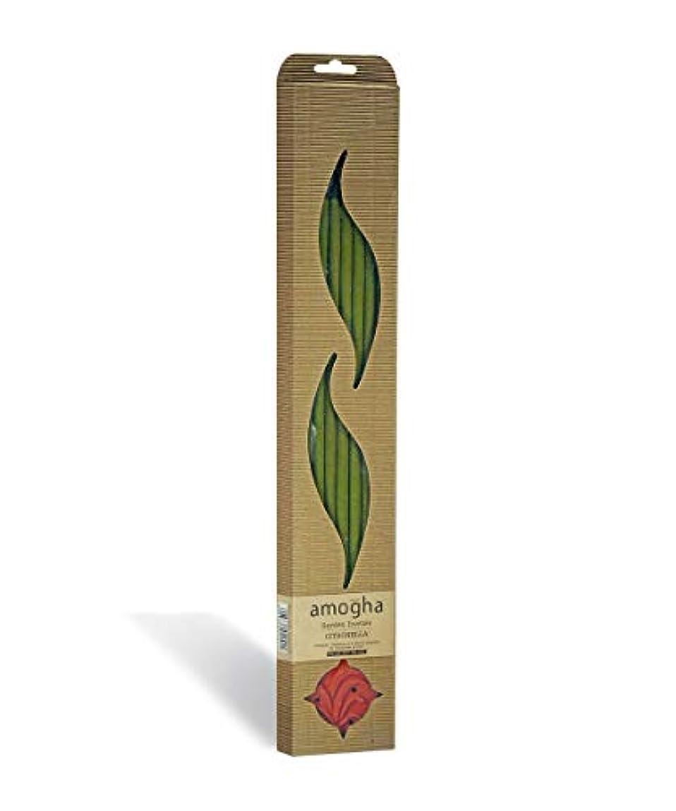 コーヒー印象仮定Iris Amogha Citronella Bamboo Incense Stick Set (8.8 cm x 2.5 cm x 53.3 cm, Green)