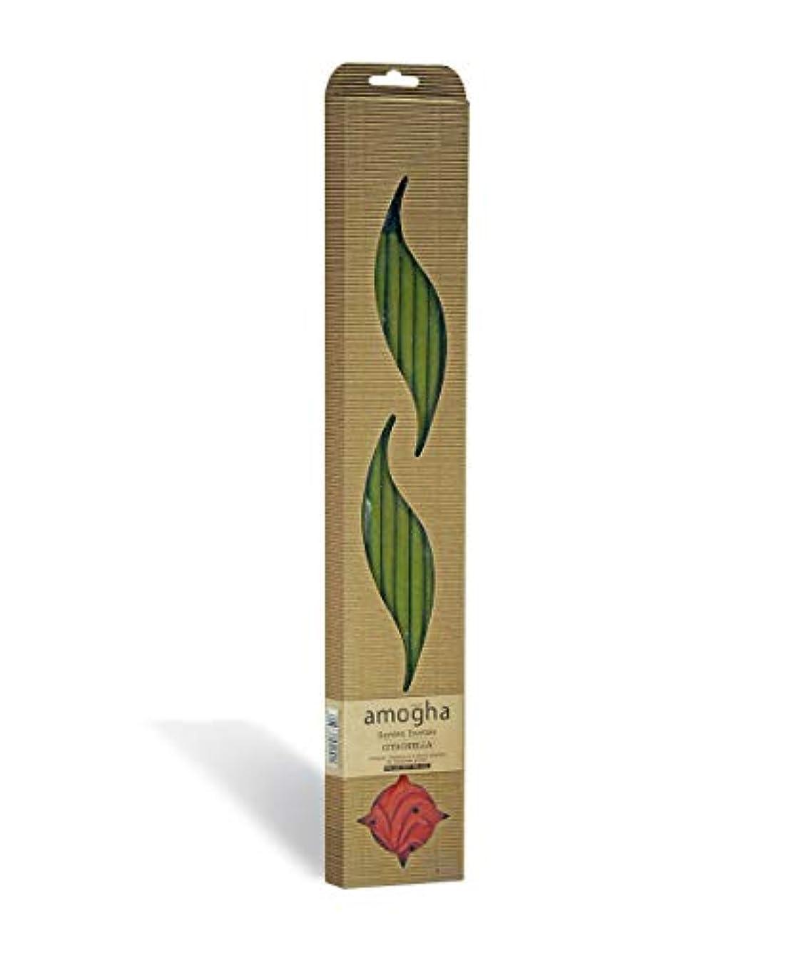 代表団小さい秀でるIris Amogha Citronella Bamboo Incense Stick Set (8.8 cm x 2.5 cm x 53.3 cm, Green)