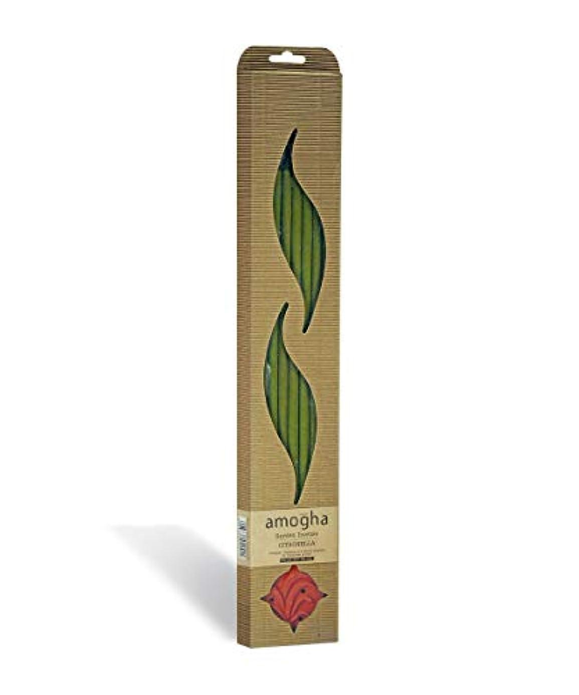 カプセルキャンパス気難しいIris Amogha Citronella Bamboo Incense Stick Set (8.8 cm x 2.5 cm x 53.3 cm, Green)