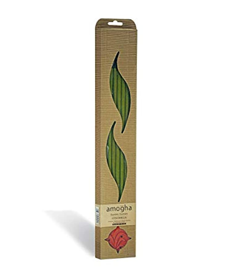 スムーズに宝儀式Iris Amogha Citronella Bamboo Incense Stick Set (8.8 cm x 2.5 cm x 53.3 cm, Green)