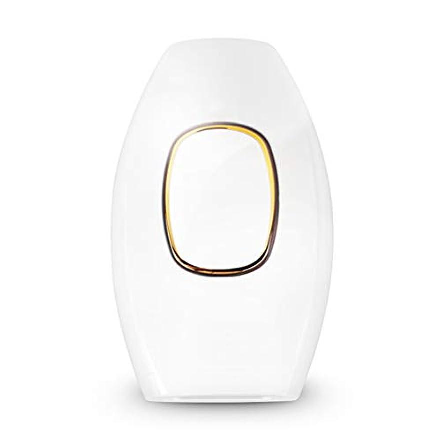 ガス消費アライメントPPWAN - 脱毛器 痛みのない人および女性の家の私用部品を凍らせる脱毛器の脈拍の毛の取り外し装置 - 8806