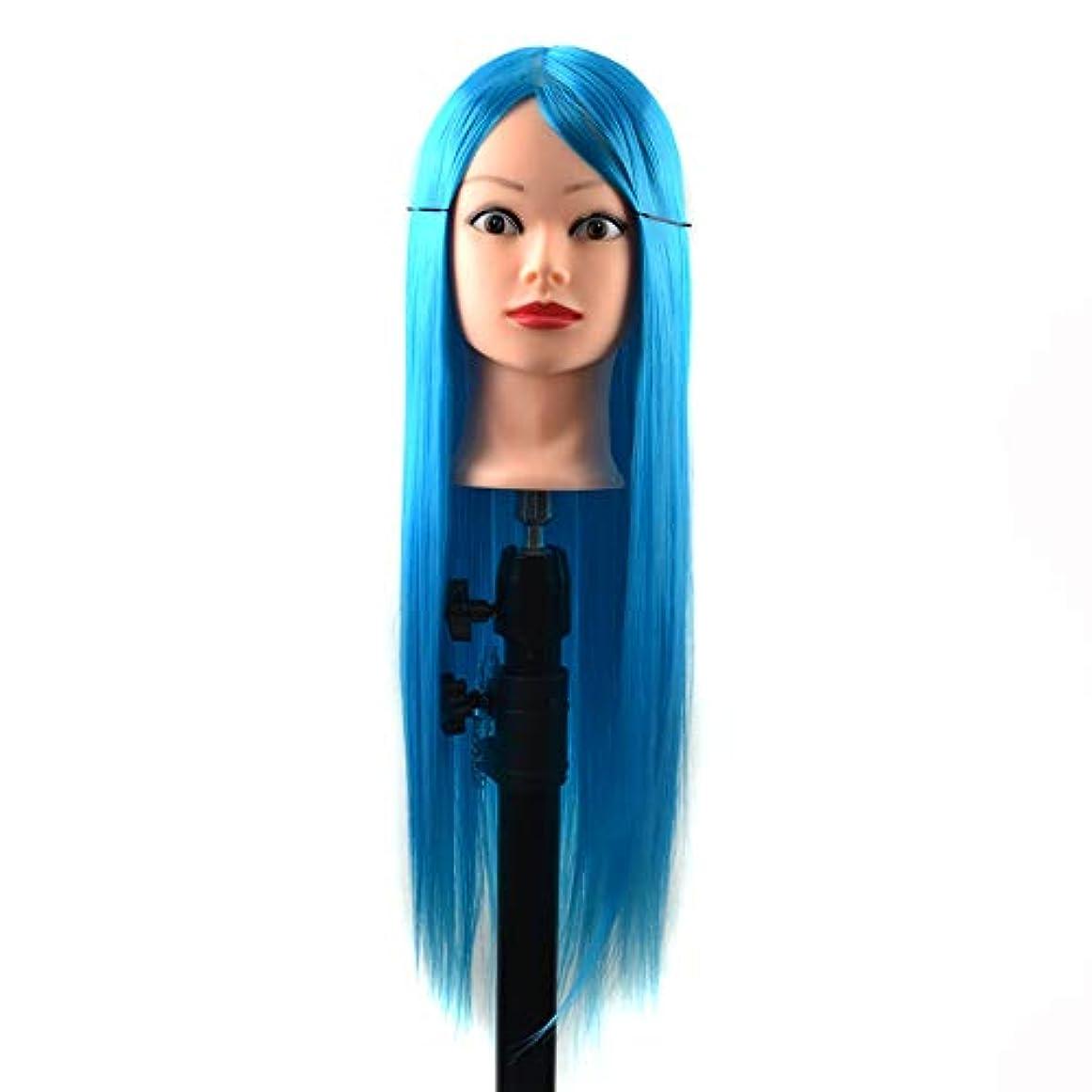 些細言い直す認可WTYD 美容ヘアツール 練習用ディスクの髪編組マネキンヘッドウィッグスタイリングトリミングヘッドモデル (色 : Sky Blue)