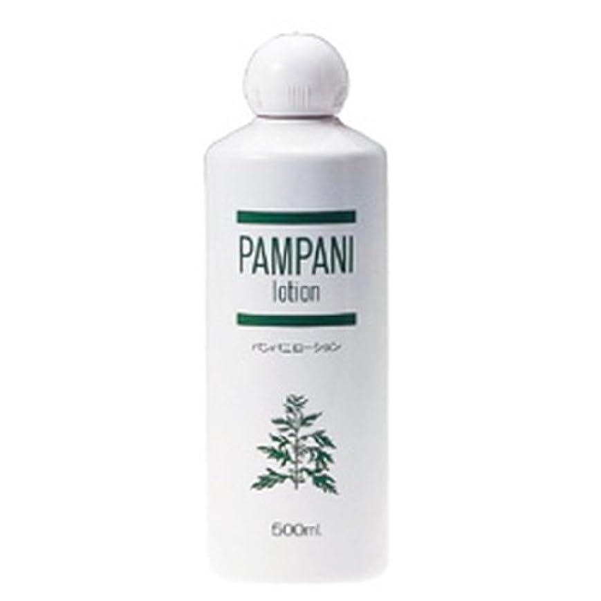 静的麻酔薬割れ目パンパニ(PAMPANI) ローション 500ml
