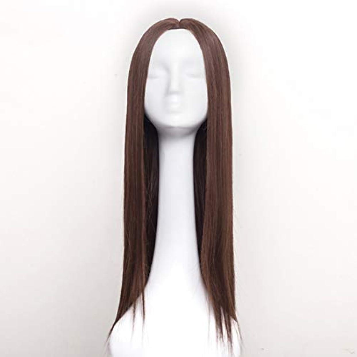 多様体二年生装置Summerys レディースウィッグロングストレートヘアウィッグ合成耐熱女性ヘアスタイルカスタムコスプレパーティーウィッグ