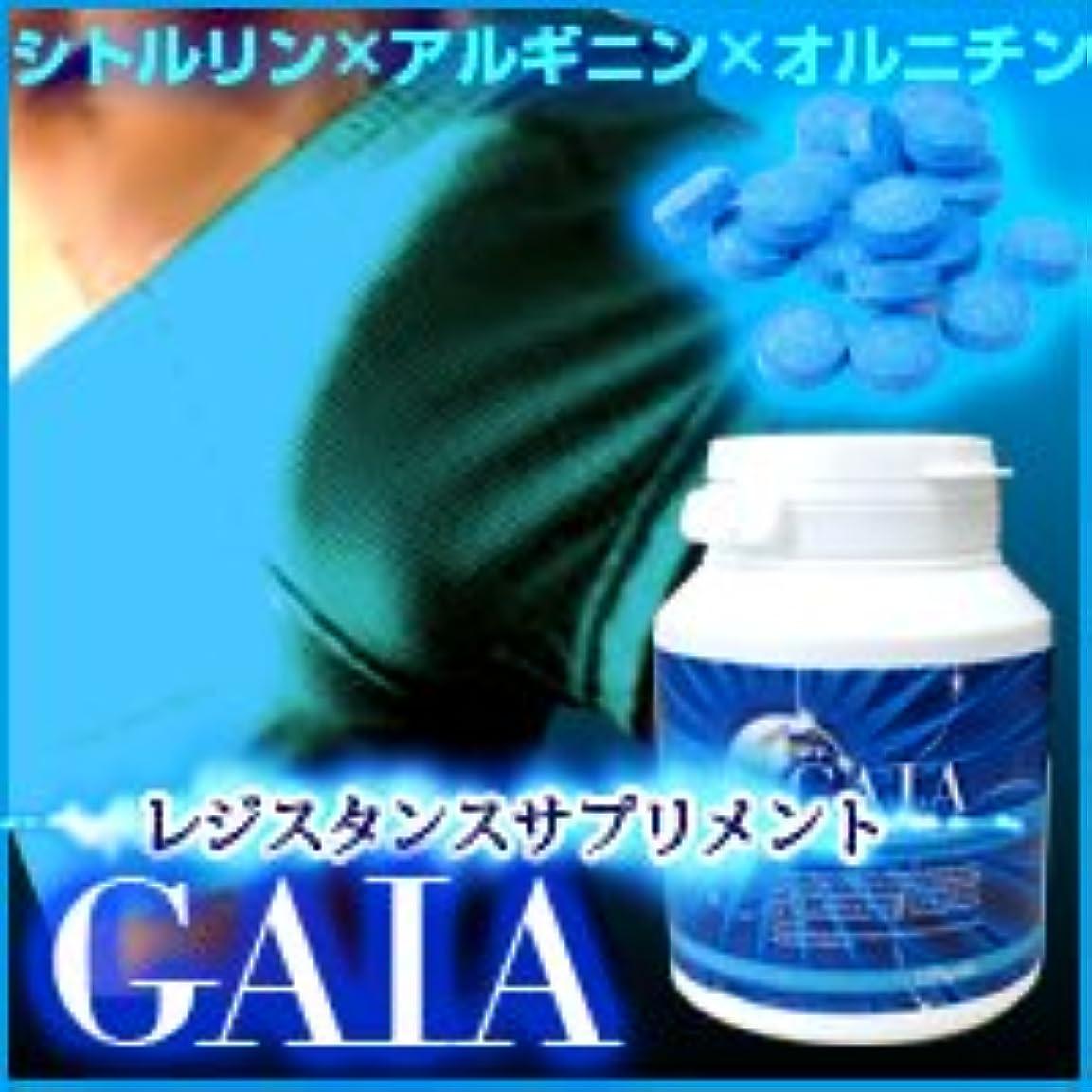 警戒採用革新ガイア (GAIA) 120粒 2個セット ※シトルリン×アルギニン×オルニチンのアミノ酸ローテーション!