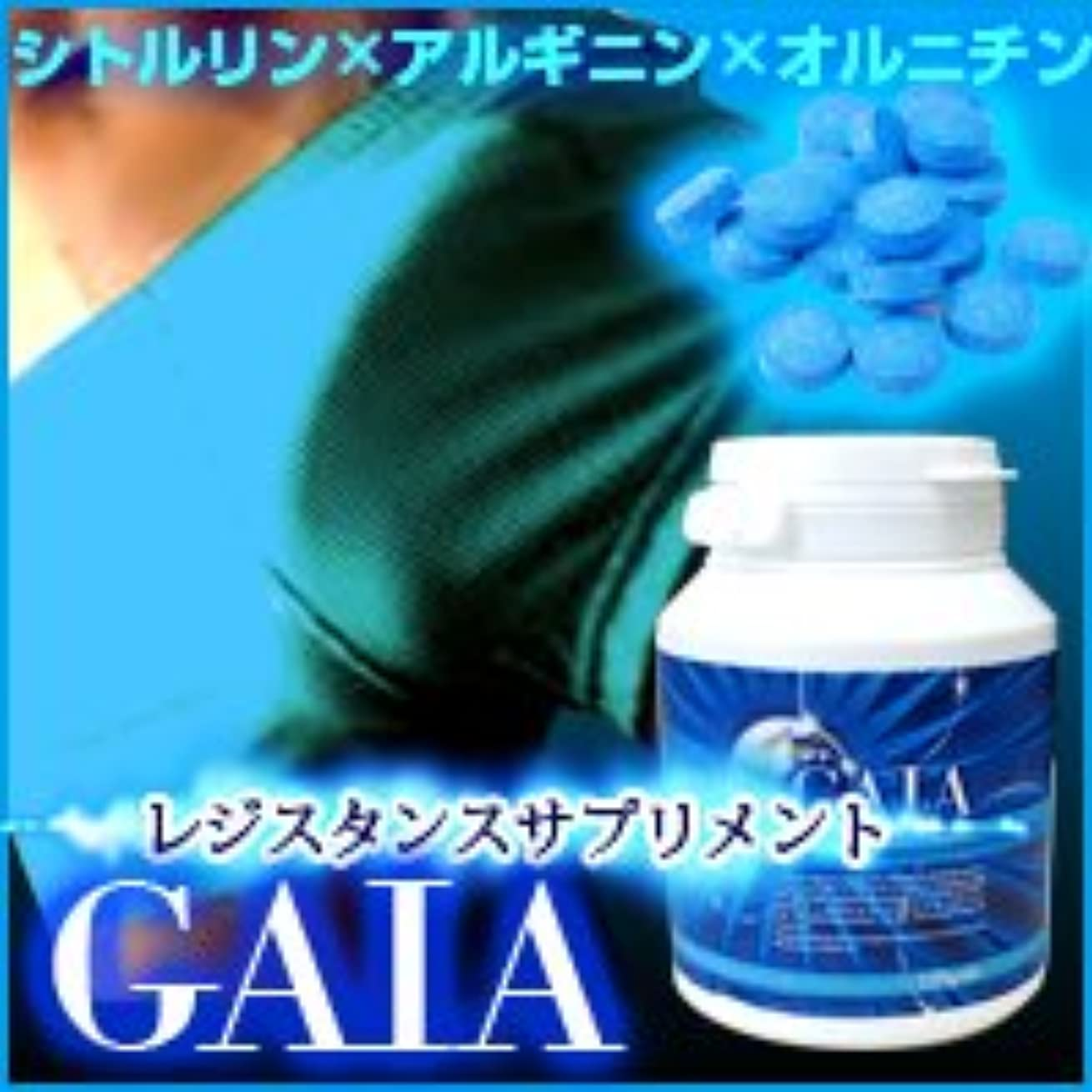 濃度論理的にスナップガイア (GAIA) 120粒 2個セット ※シトルリン×アルギニン×オルニチンのアミノ酸ローテーション!