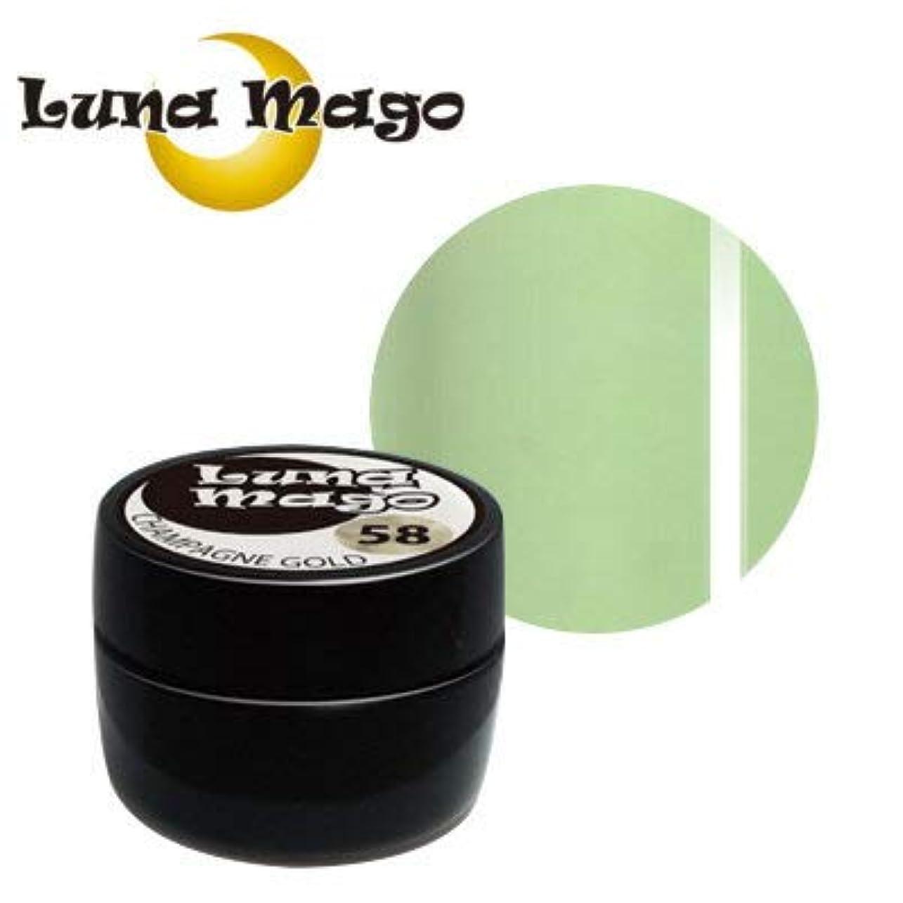 遵守するベッドを作る談話Luna Mago カラージェル 5g 037 グリーンティラテ