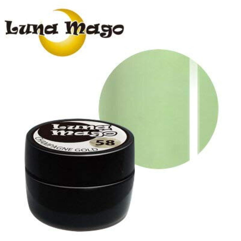 インゲン時代遅れ明日Luna Mago カラージェル 5g 037 グリーンティラテ
