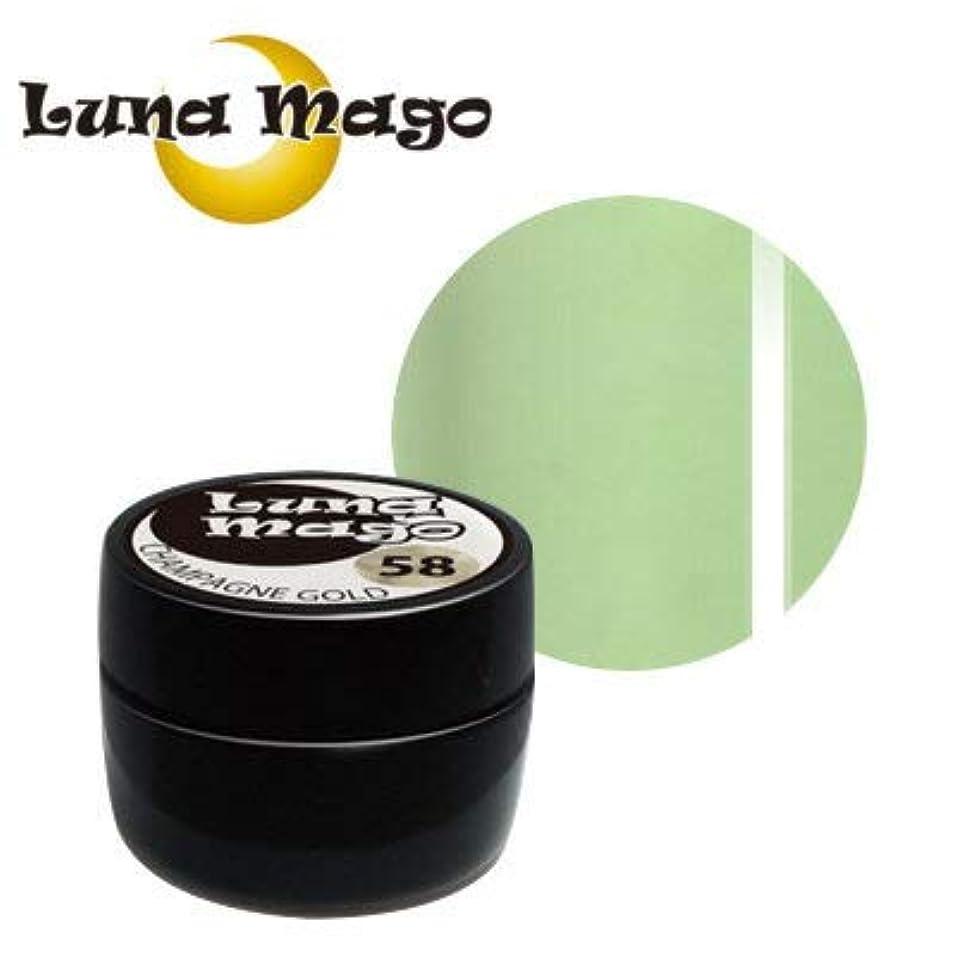 バレーボールアメリカ遊具Luna Mago カラージェル 5g 037 グリーンティラテ