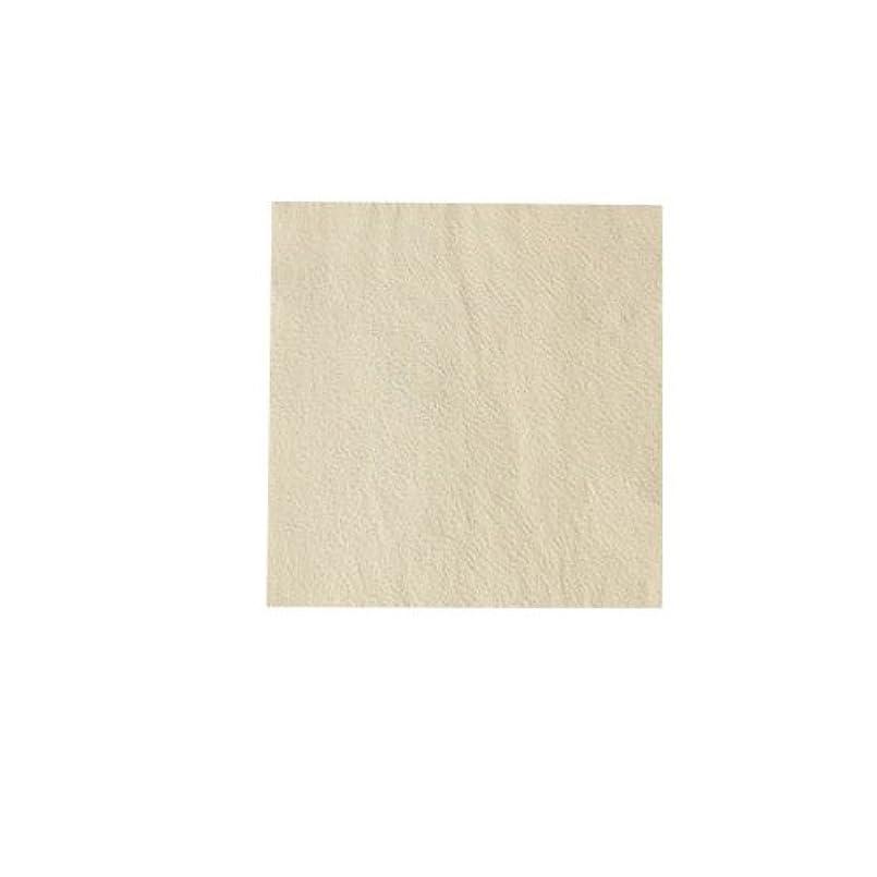 ピカエース ネイル用パウダー パステル銀箔 #641 パステルイエロー 3.5㎜角×5枚